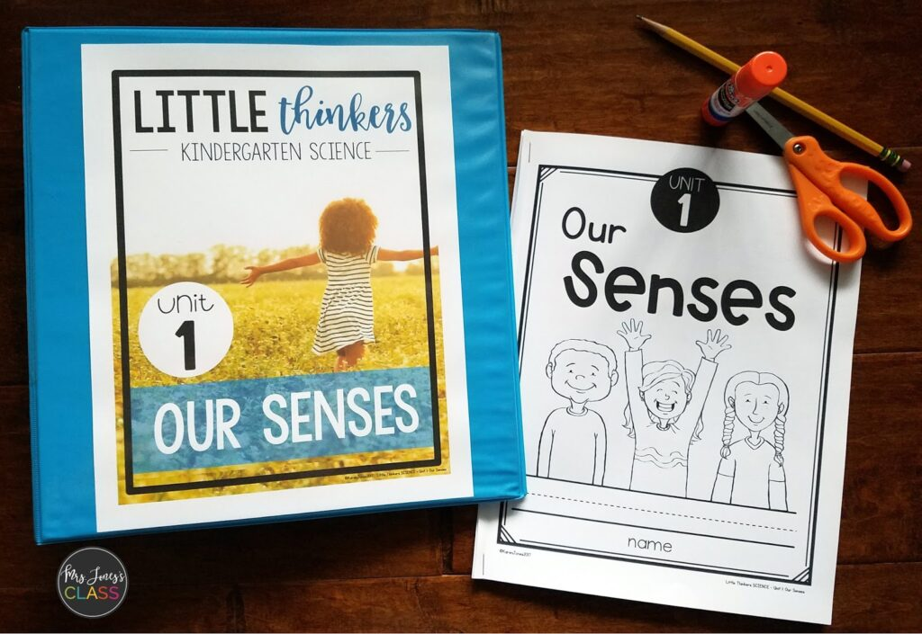 senses unit for kindergarten